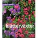 Trädgård med färg Klätterväxter