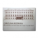 Carolina Rediviva - Byggnadens historia....