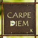 Tankeruta Carpe Diem Copper
